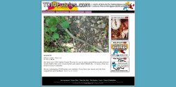 tdi4puzzles.com